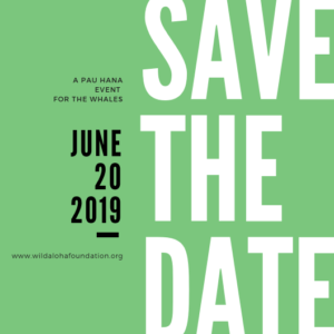 Save the date -  June 20, 2019