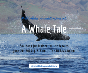 A Whale Tale -  June 20, 2019